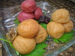 和歌山県紀州南高梅の昔ながらの梅干からはちみつ梅、かつお梅、しそ梅に!