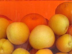 和歌山県紀州の梅農家から取れたて南高梅の紅梅の梅酒